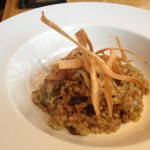 Wild mushroom, pearl barley and parmesan