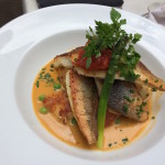 Gurnard and bream fillets